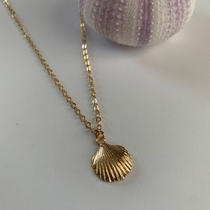 Jewelry - Beach Jewelry // Gold Shell Necklace // Minimalist